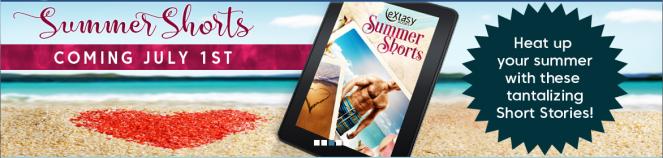Summer Heat Banner